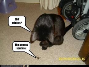 Ebil minion?