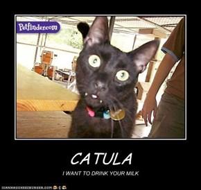 CATULA