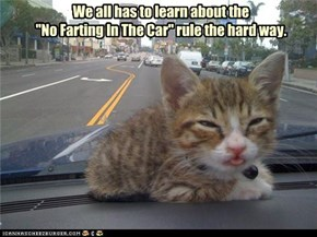 "We all has to learn about the ""No Farting In The Car"" rule the hard way."