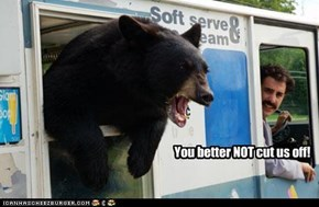 Rage Bear Thinks Not of Your Feelings.