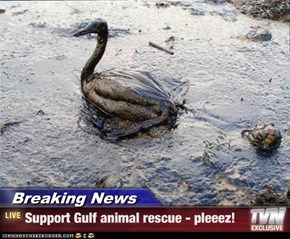 Breaking News - Support Gulf animal rescue - pleeez!