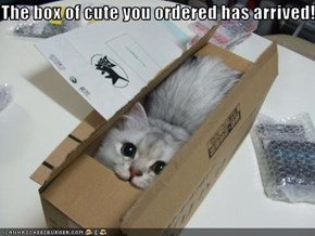 The box of cute you ordered has arrived!