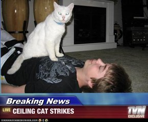 Breaking News - CEILING CAT STRIKES