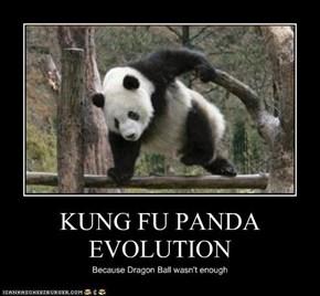 KUNG FU PANDA EVOLUTION