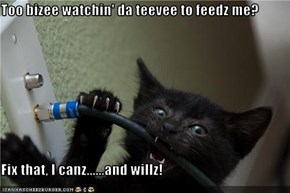 Too bizee watchin' da teevee to feedz me?  Fix that, I canz......and willz!