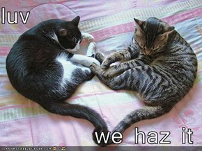 luv  we haz it
