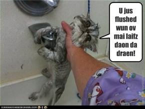 U jus flushed  wun ov  mai laifz daon da draen!