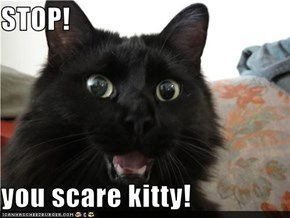 STOP!  you scare kitty!
