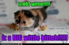 Iz NOT wittle!!!!!