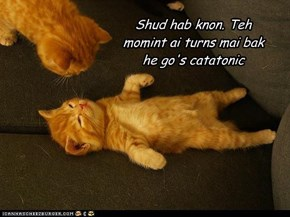 Shud hab knon. Teh momint ai turns mai bak he go's catatonic