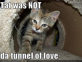 Tat was NOT  da tunnel of love