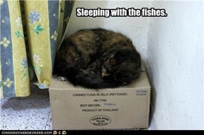 Sleeping with the fishes.