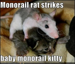 Monorail rat strikes  baby monorail kitty