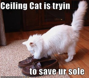 Ceiling Cat is tryin  to save ur sole