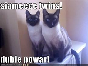 siameece twins!  duble powar!