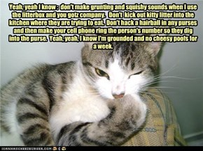 Yeah, yeah I know :  don't make grunting and squishy sounds when I use the litterbox and you gotz company.   Don't  kick out kitty litter into the kitchen where they are trying to eat.  Don't hack a hairball in any purses and then make your cell phone rin