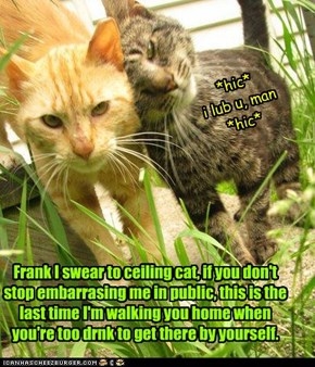 Frank I swear to ceiling cat, if you don't stop embarrasing me in public, this is the last time I'm walking you home when you're too drnk to get there by yourself.