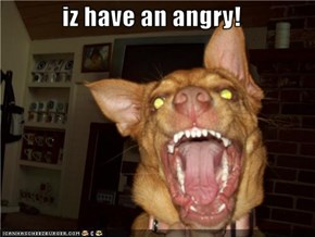 iz have an angry!