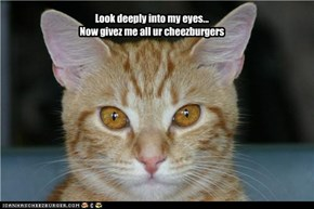 Look deeply into my eyes... Now givez me all ur cheezburgers