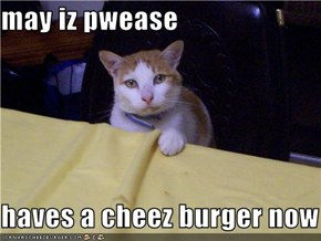may iz pwease  haves a cheez burger now
