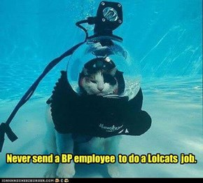 Never send a BP employee  to do a Lolcats  job.