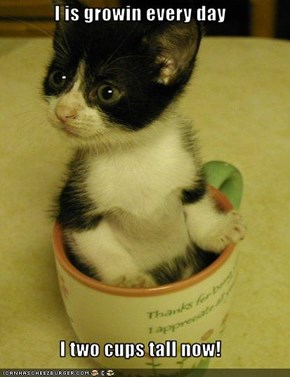I is growin every day  I two cups tall now!