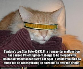 Captain's Log, Star Date 45232.8:  a transporter malfunction has caused Chief Engineer LaForge to be merged with Lieutenant Commander Data's cat, Spot.   I wouldn't mind it so much, but he keeps yakking up hairballs all over the bridge.