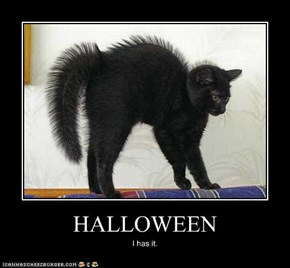 A Cat's Natural Halloween Costume