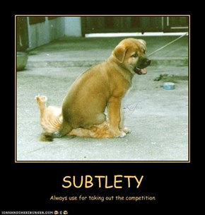 SUBTLETY