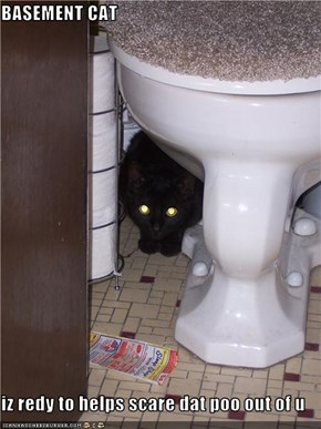 BASEMENT CAT  iz redy to helps scare dat poo out of u