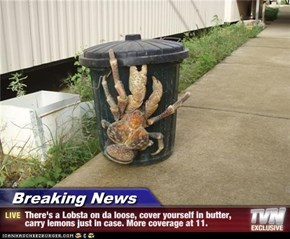 Breaking News - There's a Lobsta on da loose, cover yourself in butter, carry lemons just in case. More coverage at 11.