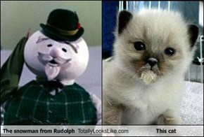 The snowman from Rudolph Totally Looks Like This cat