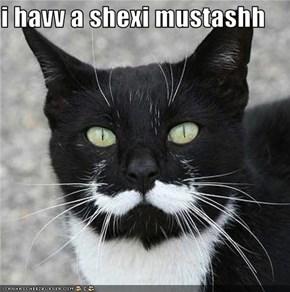 i havv a shexi mustashh