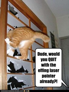 Dude, would you QUIT with the effing laser pointer already?!