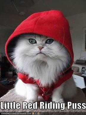 Little Red Riding Puss