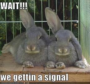 WAIT!!!  we gettin a signal