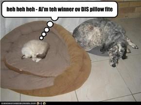 heh heh heh - Ai'm teh winner ov DIS pillow fite