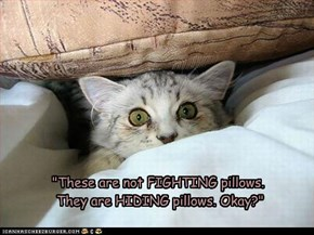 """These are not FIGHTING pillows.  They are HIDING pillows. Okay?"""