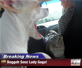 Breaking News - Doggeh Seez Lady Gaga!