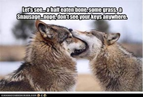 Let's see... a half eaten bone, some grass,  a Snausage...nope, don't see your keys anywhere.
