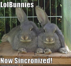 LolBunnies  Now Sincronized!