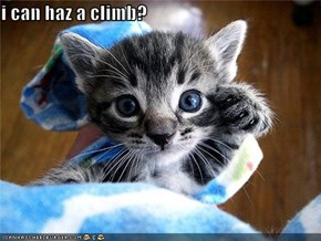 i can haz a climb?