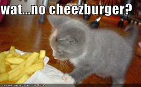 wat...no cheezburger?