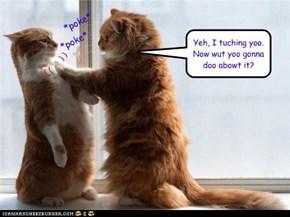 Yeh, I tuching yoo.Now wut yoo gonna doo abowt it?
