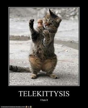 TELEKITTYSIS