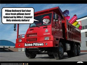 Acme Pillows