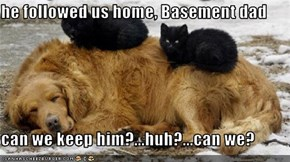 he followed us home, Basement dad  can we keep him?...huh?...can we?