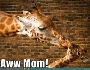 Aww Mom!