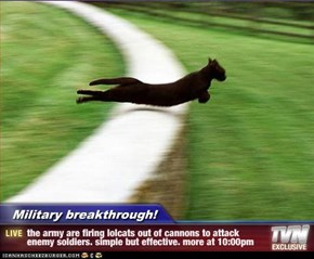 Military breakthrough! - the army are firing lolcats out of cannons to attack enemy soldiers. simple but effective. more at 10:00pm
