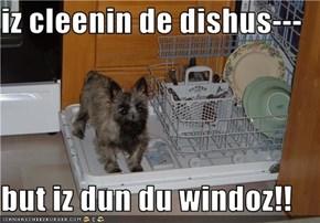 iz cleenin de dishus---  but iz dun du windoz!!
